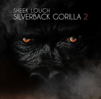 Sheek Louch – Memory Lane -- uncutmagazine.net